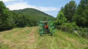 Hay first cutting 2012 015